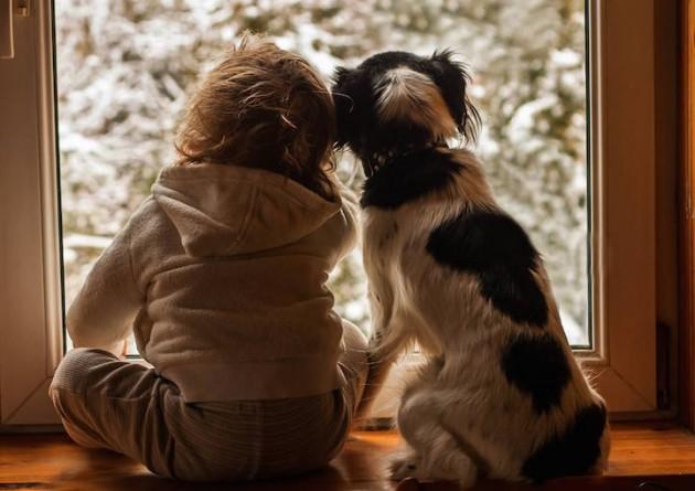 Mãe fotografa momentos de carinho entre filho e cães