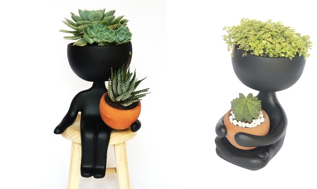 Maneiras diferentes de ter plantas dentro de casa blog for Plantas para dentro de casa sombra