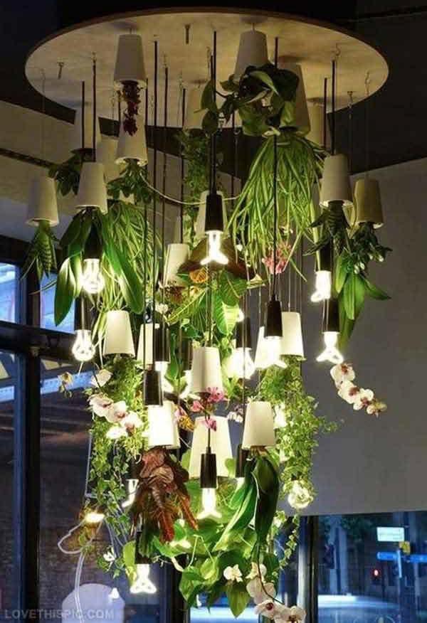 Maneiras diferentes de ter plantas dentro de casa blog for Decoracion de casas con plantas de interior