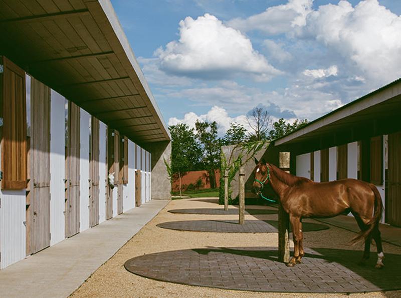 arquitetura equestre