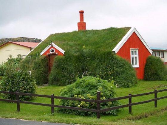 incríveis telhados verdes