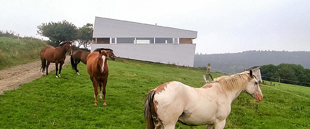 Construção moderna em local bucólico, com cavalos em primeiro plano e construção em segundo plano